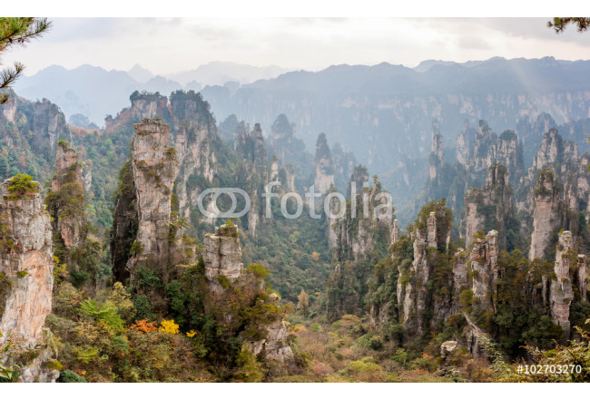 ZhangJiaJie National Forest Park in China 64239