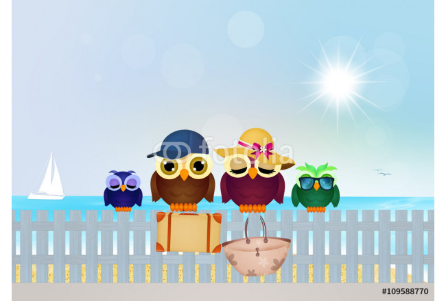 Art painting owls on summer vacations 64239