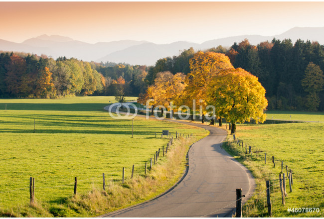 Winding Country Road through autumnal Landscape 64239