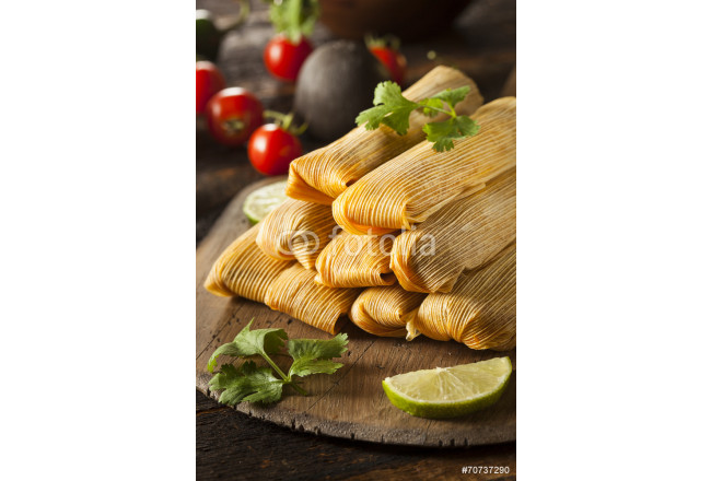 Painting Homemade Corn and Chicken Tamales 64239