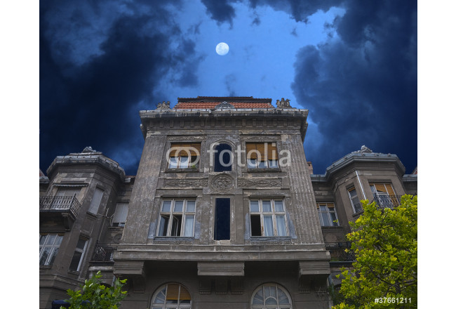 Bild auf Leinwand Old haunted house. Stormy clouds and moon 64239