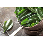 Fresh spinach in the copper pot 64239