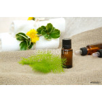 Dill essential oil 64239