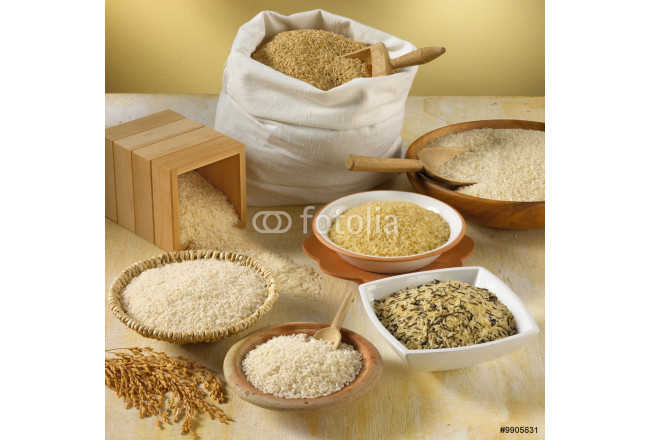 Verities of Rice in the World 64239