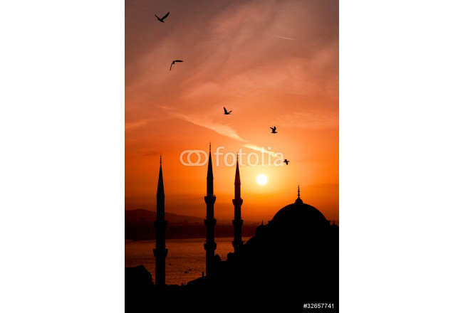 Night view of mosque, Istanbul 64239