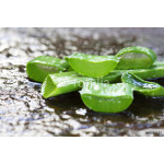 Aloe Vera leaves on wooden background 64239