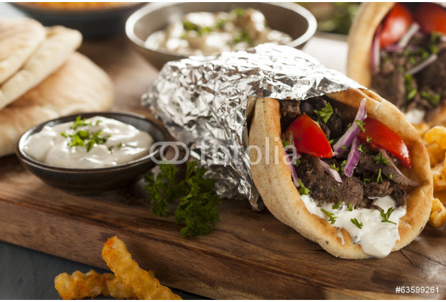 Art painting Homemade Meat Gyro with French Fries 64239