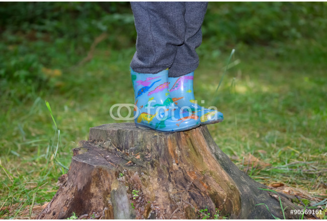 Painting Legs boy in rubber boots standing on a tree stump 64239