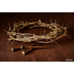 Crown of Thorns and Nails 64239