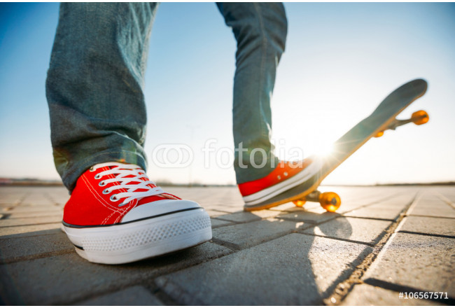 skater riding a skateboard. view of a person riding on his skate 64239