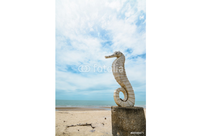 seahorse with sea sand and sky 64239