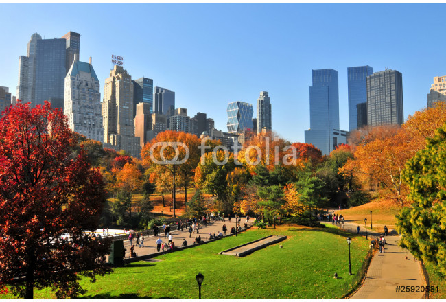 Autumn in the Central Park & NYC. 64239