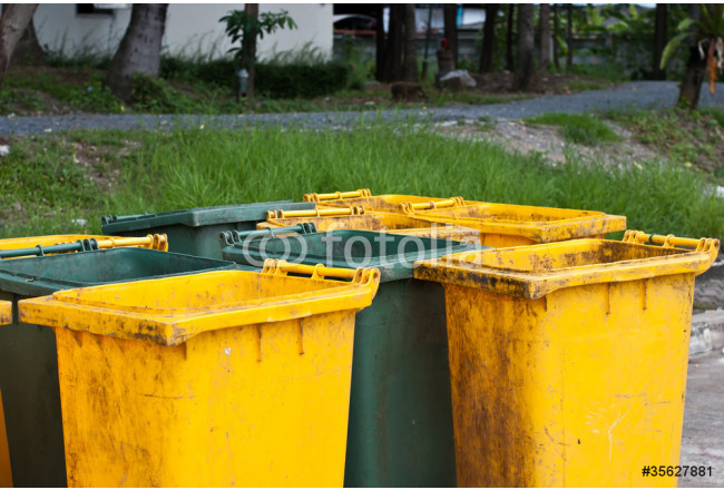 Green and yellow rubbish bins in a park. 64239