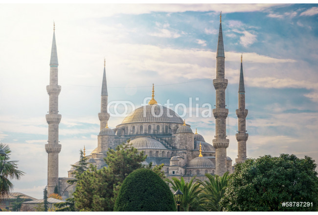 Art painting Blue Mosque in Istanbul 64239