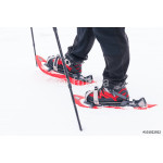snowshoes in the snow. 64239