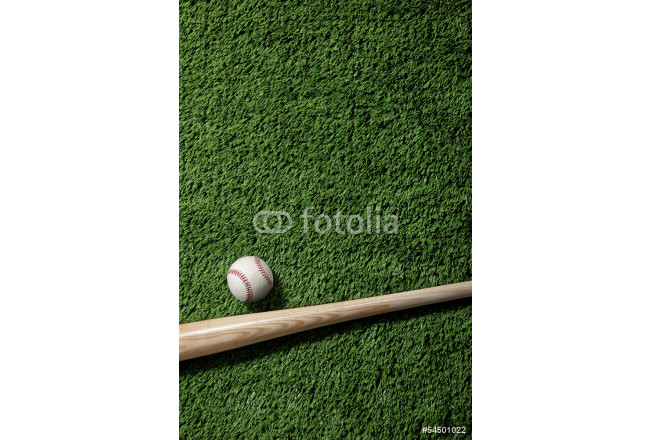Overhead view of baseball and bat on green turf 64239