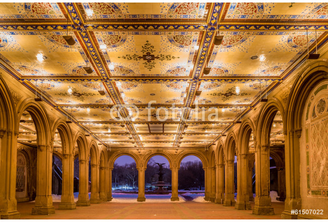 renovated Bethesda Arcade and Fountain in Central Park, New York 64239