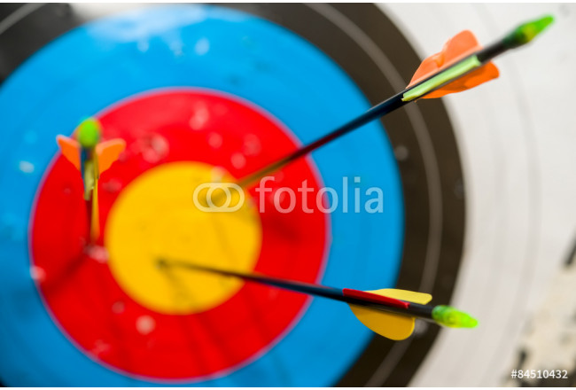 Arrows in the competition hit the target 64239