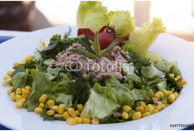 Tuna Salad served with greens and corns. 64239