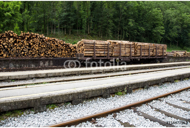 Logs for Transportation on Railway Station 64239
