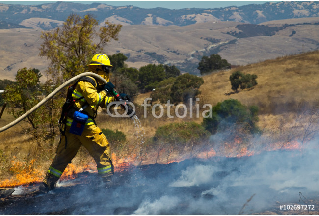 Wildland Firefighter fighting grass fire 64239