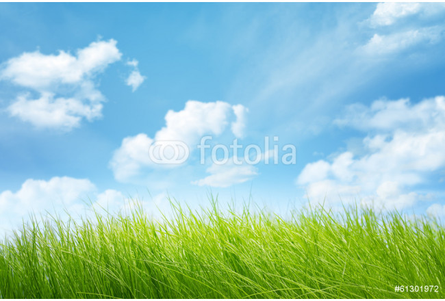 Natural backgrounds 64239