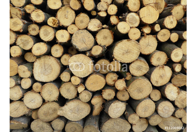 Felled timber. stack of wood for fire in winter 64239