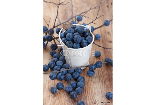 Blackthorn berry (sloe) on wooden table 64239