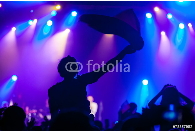 Obraz nowoczesny Cheering crowd having fun at a concert. 64239