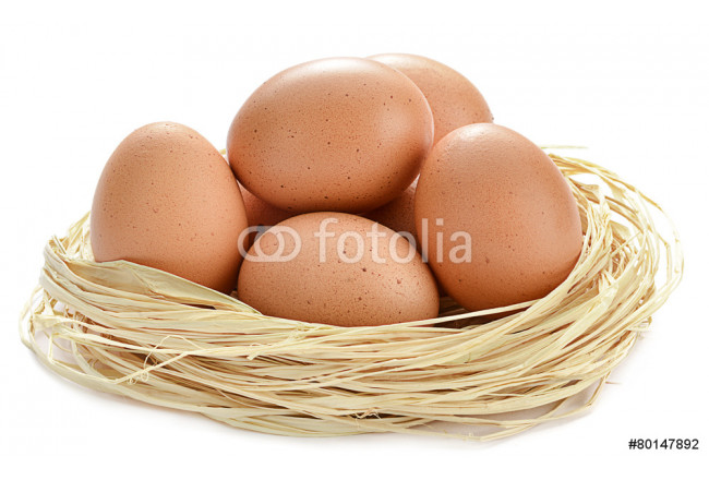 Eggs in a nest isolated on white background 64239