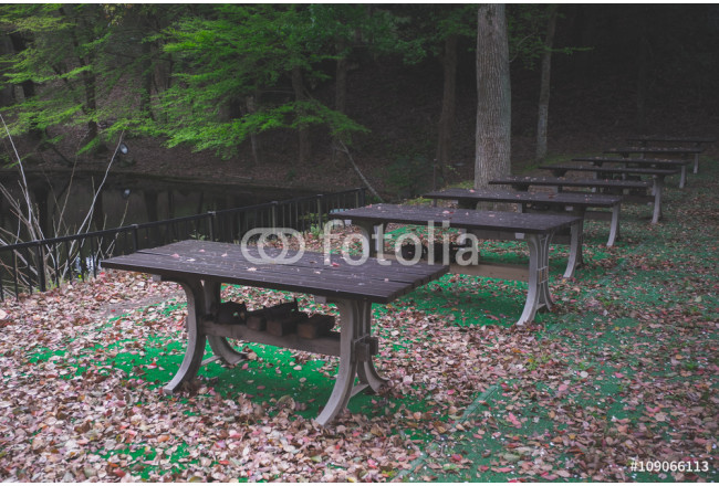 Picnic place in forest fade old filter 64239