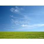 blue sky and green grass for successful advertisement 64239