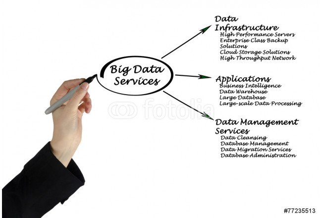 Big Data Services 64239