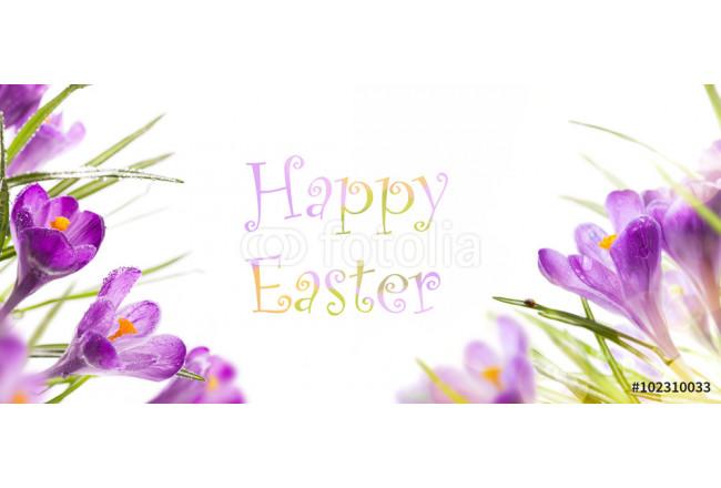 Leinwandbild Art Easter Background With Spring Flowers Die