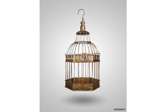 vintage bird cage on gray background 64239