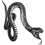 Big snake with open mouth, black and white style 64239