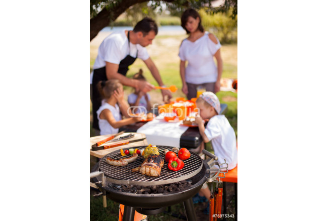 Toile déco Family on vacation having barbecue 64239