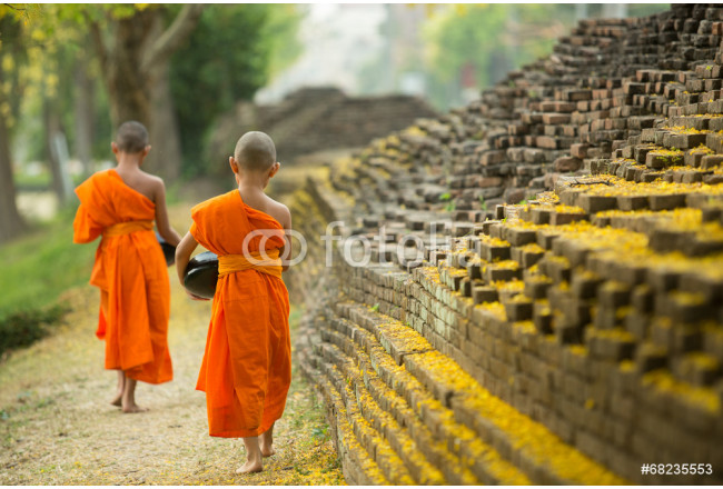 Buddhist Monk walking for receive food 64239