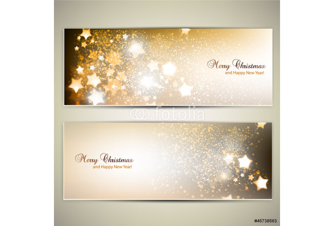Set of Elegant Christmas banners with stars. Vector illustration 64239