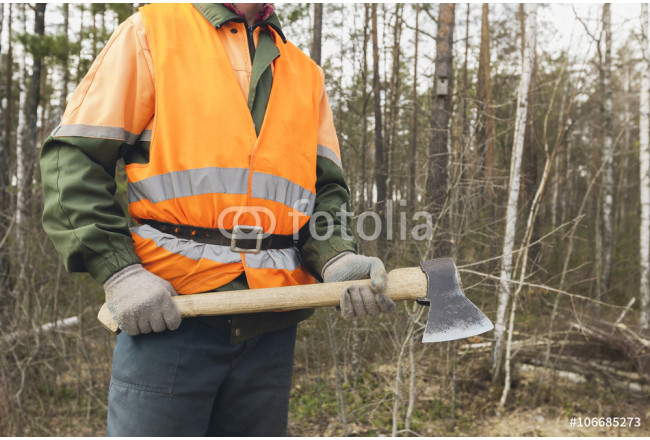 Lumberjack with an axe on the forest background 64239