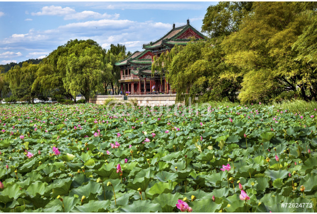 Cuadro decorativo Red Pavilion Lotus Garden Summer Palace Park Beijing China 64239