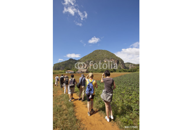 The tourists in Vinales Valley, Cuba 64239