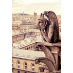 Chimera (gargoyle) of the Cathedral of Notre Dame de Paris 64239