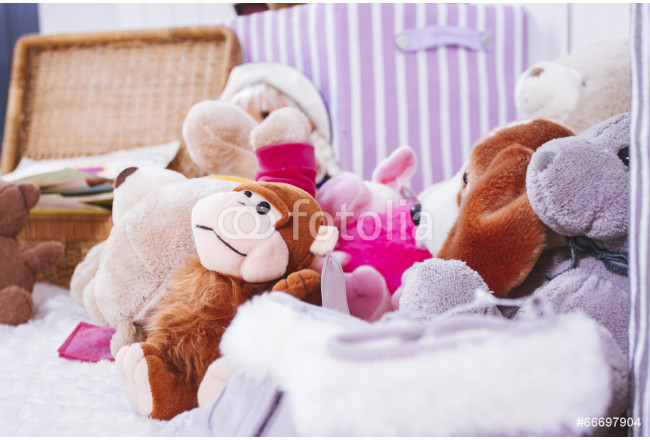 Stuffed animal toys in interior room 64239