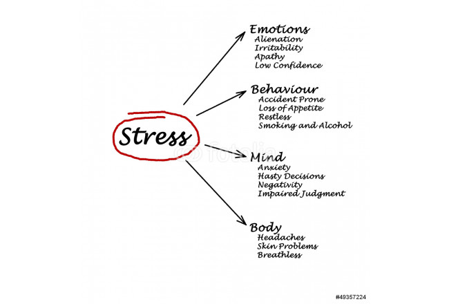 Diagram of stress consequences 64239