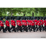 Queen's foot guards marching in formation down The Mall in a royal Trooping the Colour ceremony in London England 64239