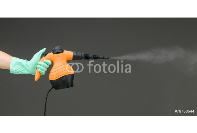 hand held steam cleaner 64239