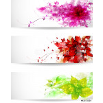 Set of three color vector background or card 64239