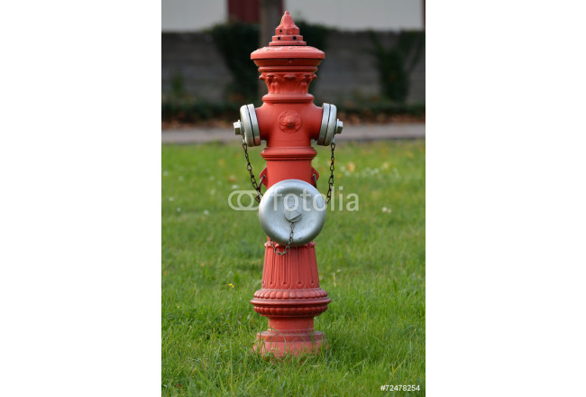 Art painting Hydrant 64239