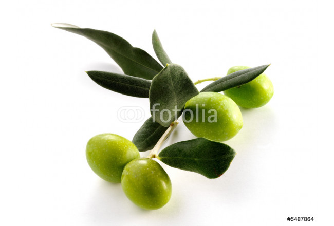 Quadro contemporaneo FOUR OLIVES ON BRANCH WITH LEAVES 64239
